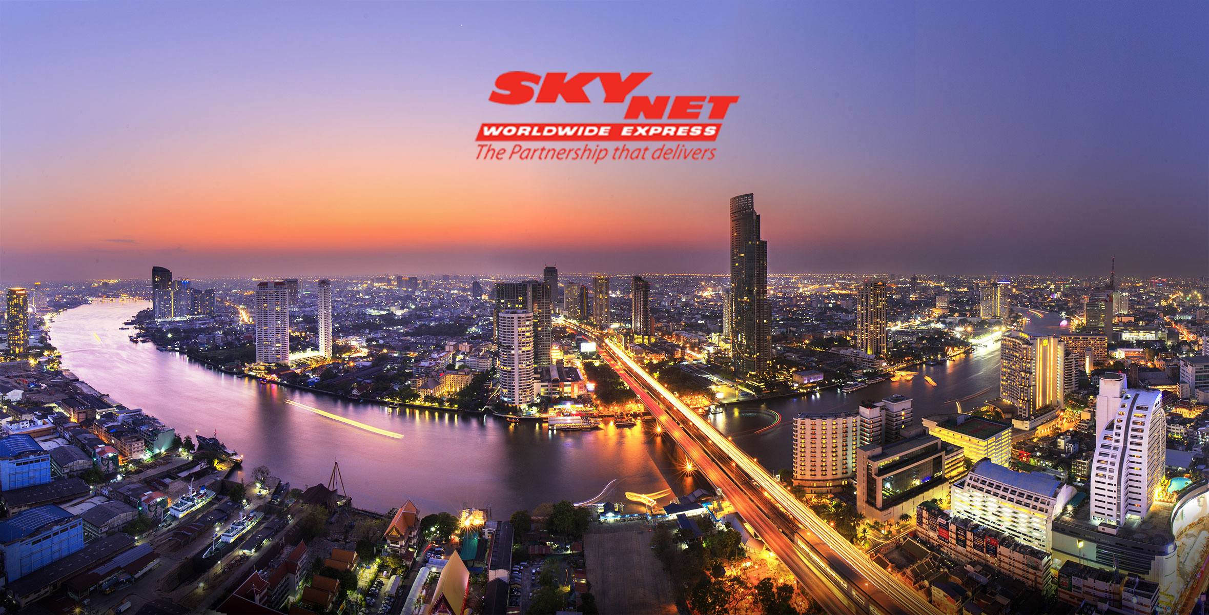 services offered by skynet nepal